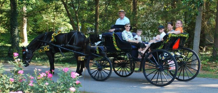 Carriage Tours of Pinehurst