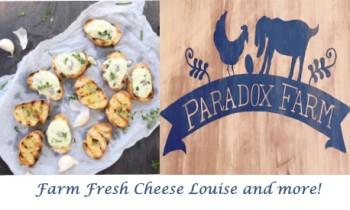 paradox cheese