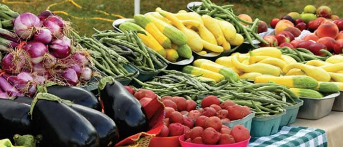 Sandhills Farmers Green Market Pinehurst